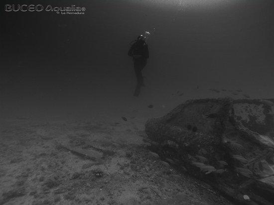 Buceo Aqualia La Herradura: Fotografía y video