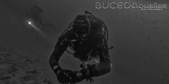 Buceo Aqualia La Herradura: Inmersiones diarias