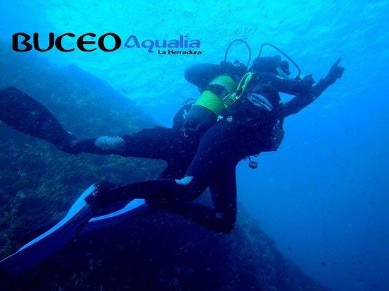 Buceo Aqualia La Herradura: Bautismos de buceo