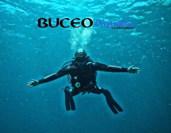 Buceo Aqualia La Herradura: Cursos de buceo PADI
