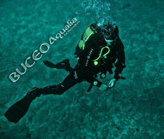 Buceo Aqualia La Herradura