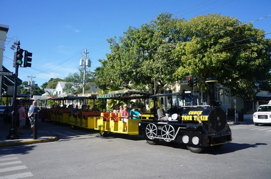 Duval Street: Trolley - Tourist Tour