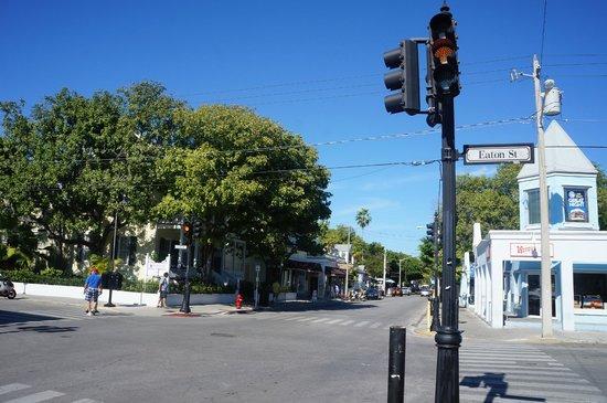 Duval Street: Duval Streer