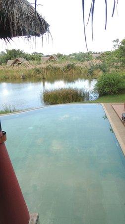 Jetwing Vil Uyana : la piscine