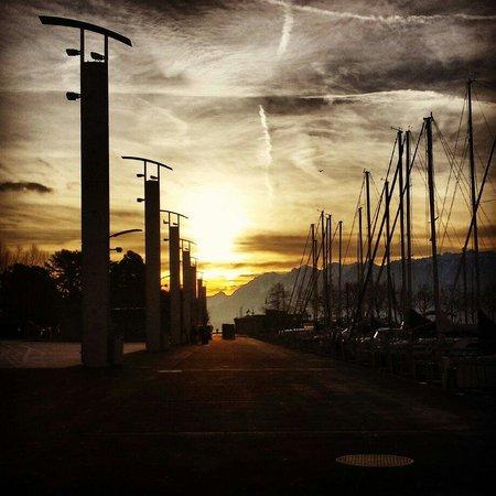 Le Port d'Ouchy : Ouchy port