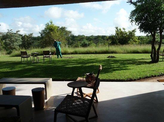 Sabi Sabi Earth Lodge: VISTA DESDE EL COMEDOR