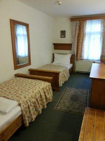 Hotel Old Inn : Room