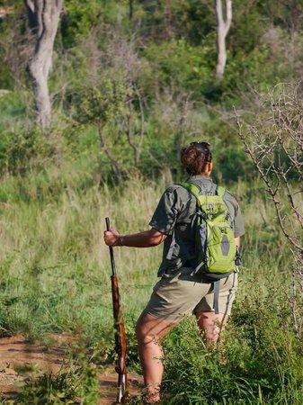 Mosetlha Bush Camp & Eco Lodge: Our walking guide