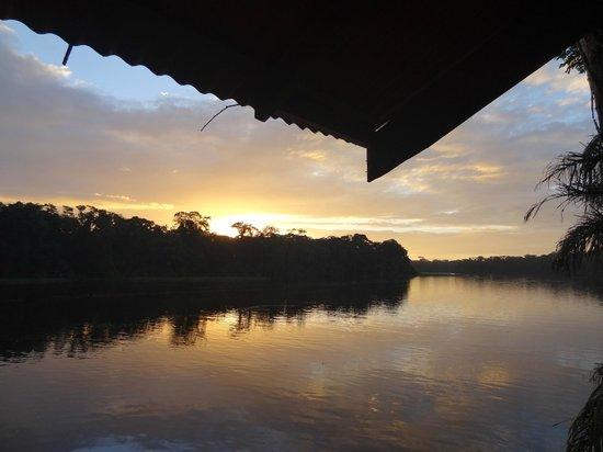 Rana Roja Lodge : view from rana roja at dawn