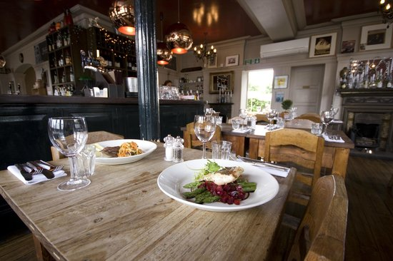 The Brown Dog: Food & Dining Room Pics