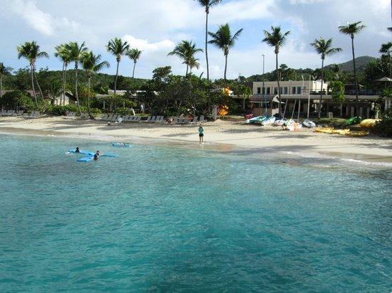 Caneel Bay Resort: Caneel Bay Beach