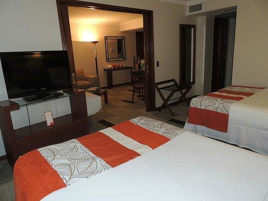 Hotel Plaza El Bosque Ebro : O apartamento