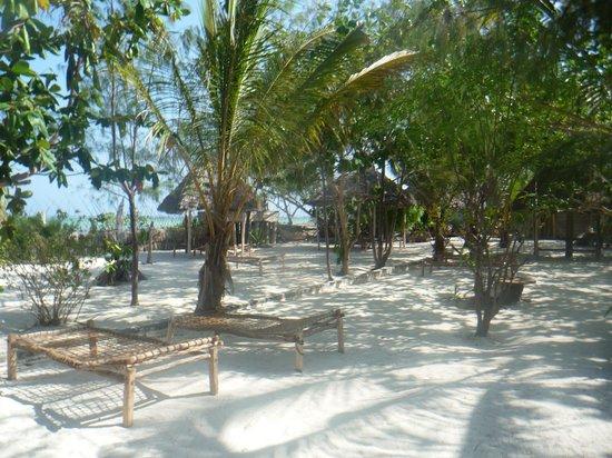Pumzika Beach Resort: Am Strand