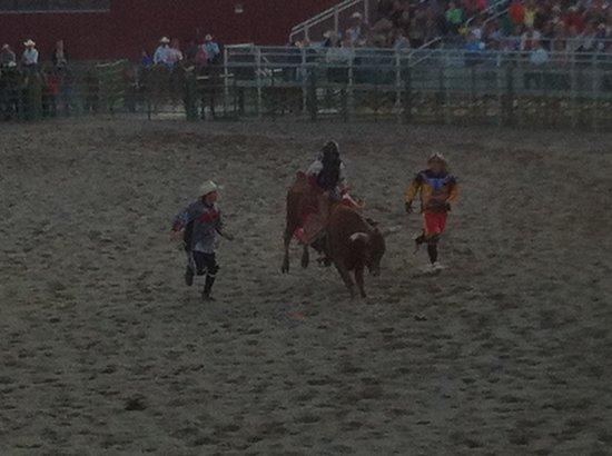 Jackson Hole Rodeo Grounds: Domas