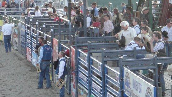 Jackson Hole Rodeo Grounds: Rezos