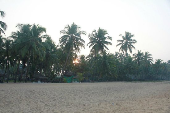 Malabar Ocean Front Resort and Spa: Sunrise from the beach