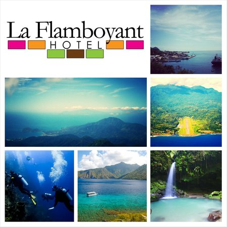 La Flamboyant Hotel: Discover The Nature Isle With Us!!