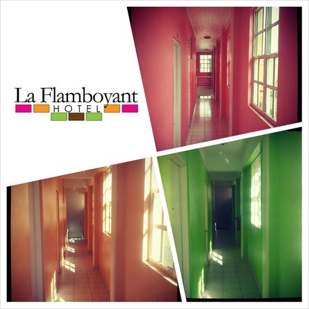 La Flamboyant Hotel: Our Flamboyant Colors Are Evident Even In Our Hallways