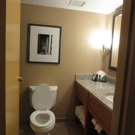 Embassy Suites by Hilton Kansas City-International Airport : Bathroom