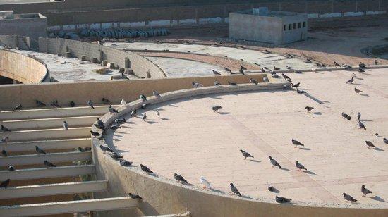 InterContinental Aqaba Resort: Dal balcone