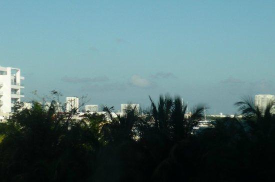 Grand Oasis Palm: vista desde la habitación