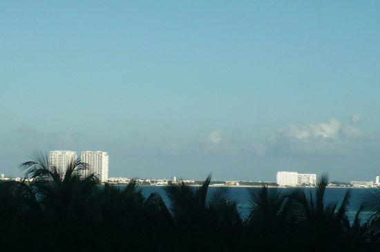 Grand Oasis Palm: alrededores