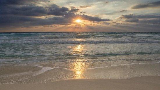 Live Aqua Beach Resort Cancun: Wow!