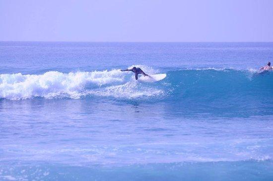 Surf 'n Lanka