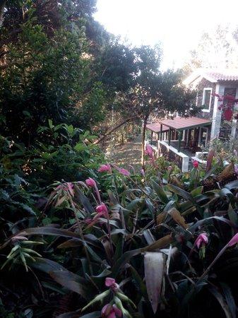 Aldeia da Fonte Nature Resort: The garden