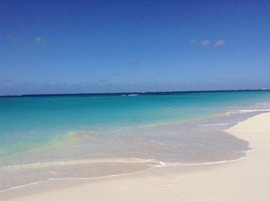 Shoal Bay : Shoal's Bay