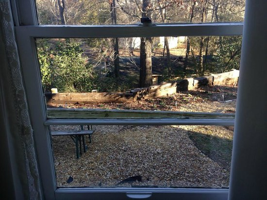 The Z: View from the Love room