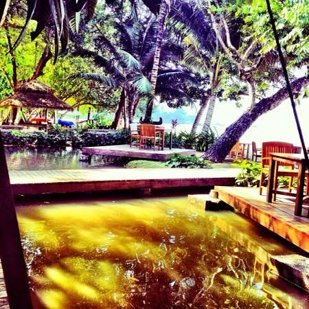 The Tubkaak Krabi Boutique Resort : the lush gardens