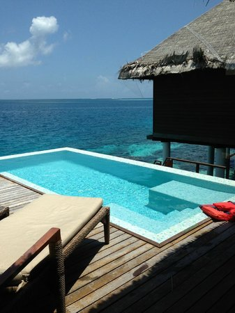 Coco Bodu Hithi: private swimming pool