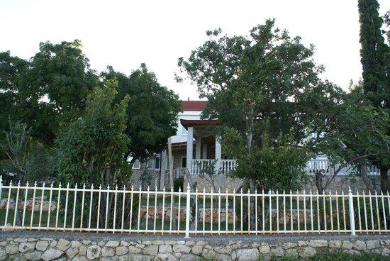 Vila Punta