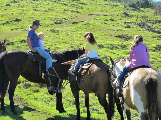 Thompson Ranch Riding Stables: A little girls dream come true!