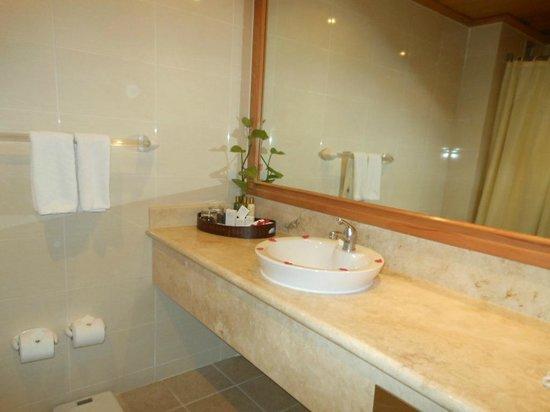 Dreams La Romana Resort & Spa: Bathroom (regular room)