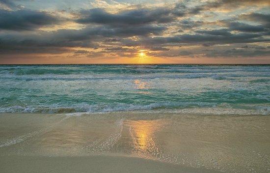 Live Aqua Beach Resort Cancun : Wow!