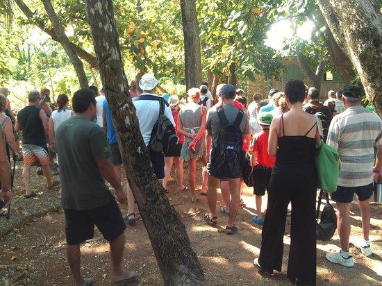 Parque Tematico El Pueblito Isleño San Andres: Our tour group