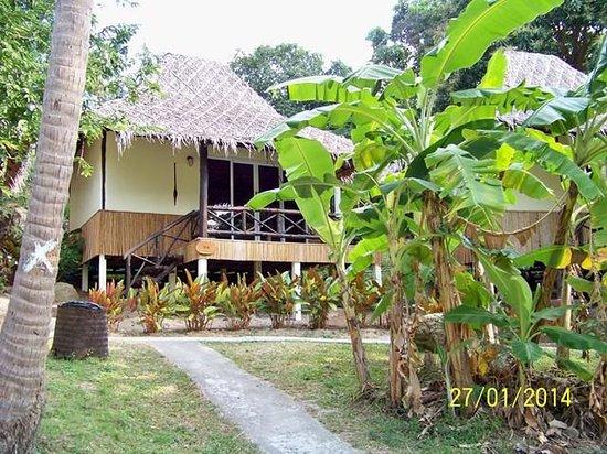 Shiralea Backpackers Resort: Bungalow