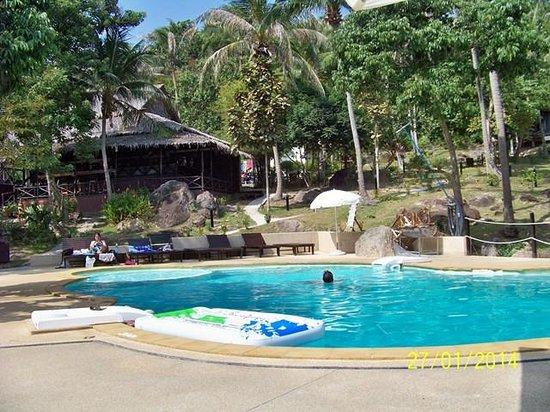 Shiralea Backpackers Resort: Piscine