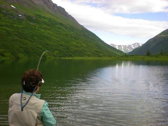 Great Alaska Adventures: MORE HEAVEN!