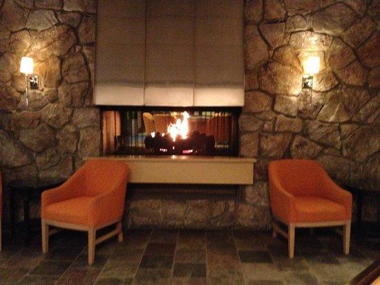 Sheraton Milwaukee Brookfield Hotel : Lobby