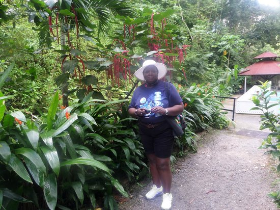 St. Lucia Rain Forest : Exploring the botanical garden