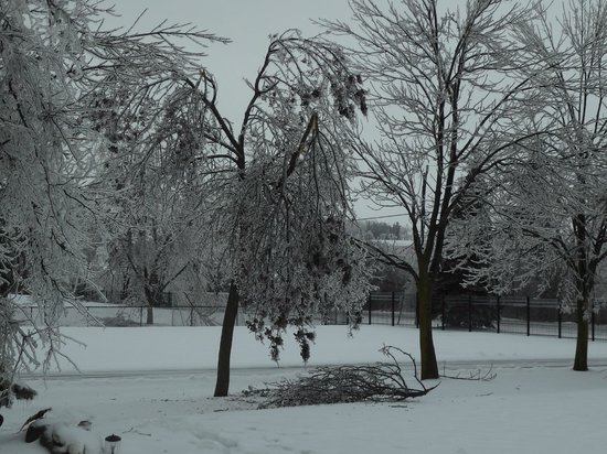 Best Western Plus Milton: ice storm