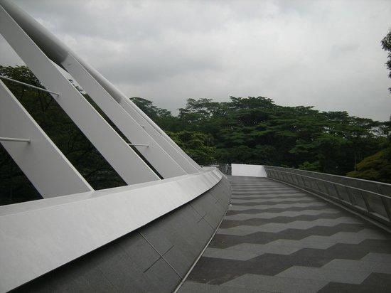 The Southern Ridges: Alexandra Arch