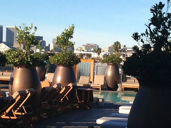 SLS Hotel, A Luxury Collection Hotel, Beverly Hills: Rooftop pool