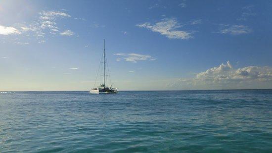 Paradisus Punta Cana Resort: Journee en catamaran ... superbe!
