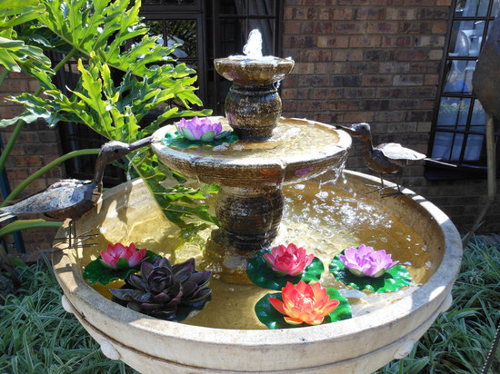 House on York: WATER FEATURE