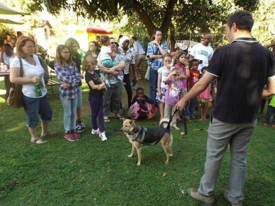 MWEDO Coffee Shop: Doggy day at MWEDO!