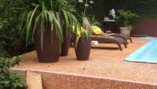 Marica B&B: Garden&pool área